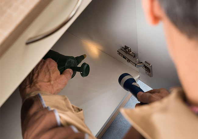 Commercial and Residential Pest Control Services